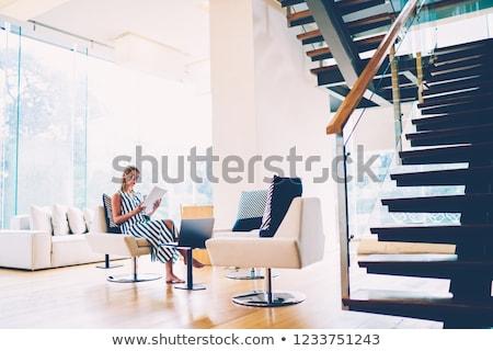 Stockfoto: Stijlvol · vrouw · luxe · interieur · mode · schoenen