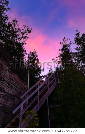 Staircase in a forest, Tobermory, Ontario, Canada Stock photo © bmonteny