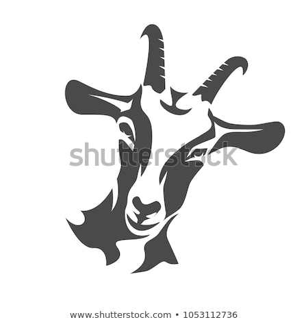 Goat Head Stock photo © rghenry