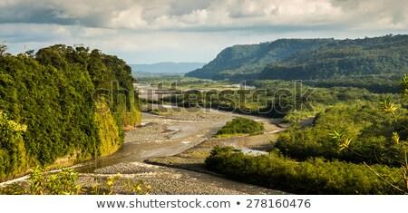 川 エクアドル 水 ツリー 風景 岩 ストックフォト © ildi