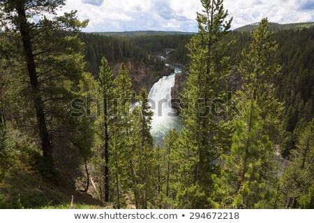 zomer · rivier · heldere · blauwe · hemel · wolken · voorjaar - stockfoto © tab62