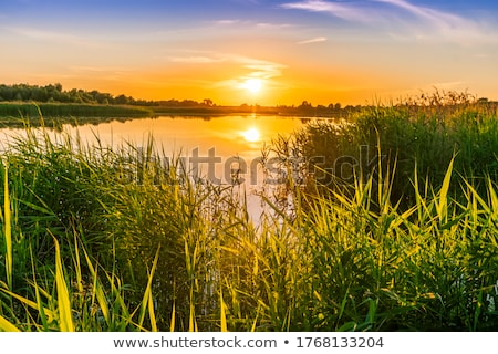 gün · batımı · tekne · yaz · göl · kıyı · eski - stok fotoğraf © nneirda
