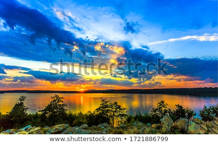 lago · mata · primavera · árvore · grama - foto stock © OleksandrO