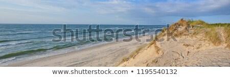 rüzgâr · park · görüntü · jeneratör · deniz · Metal - stok fotoğraf © mariusz_prusaczyk