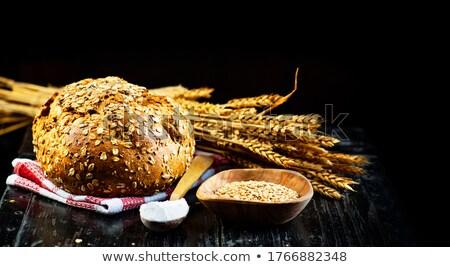 Frans bakker brood Stockfoto © x7vector