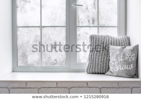 gelo · naturalismo · padrão · inverno · janela · gelado - foto stock © alphababy