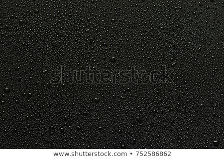 Vidrio agua blanco negro mesa casa salud Foto stock © CaptureLight