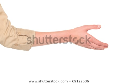 businesswoman - reaching handshake stock photo © dgilder
