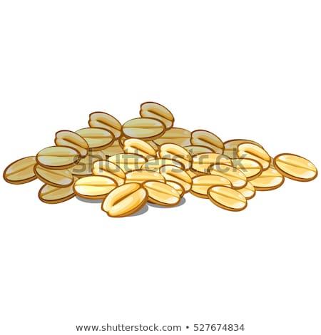 ライ麦 穀物 クローズアップ 穀類 デザイン ストックフォト © robuart