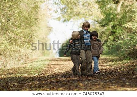 three boys walking on country lane stock photo © is2