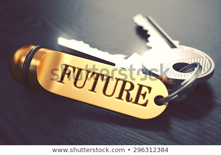 Keys to Dreams. Concept on Golden Keychain. Stock photo © tashatuvango