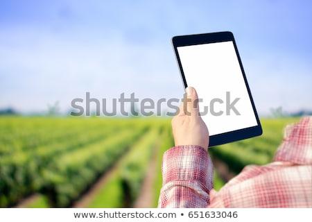tablet · agrarisch · productie · vrouwelijke · landbouwer · tarwe - stockfoto © stevanovicigor