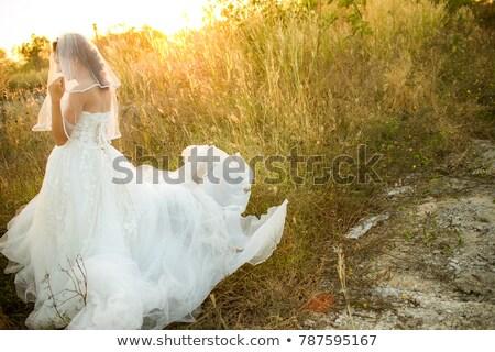 Bruid trouwjurk alleen veld schoonheid Stockfoto © IS2