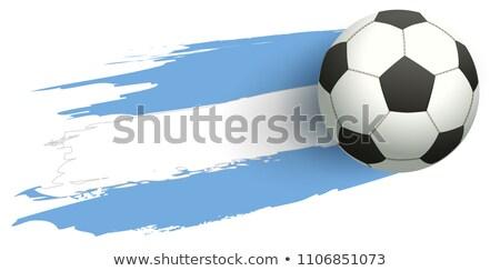 Photo stock: Ballon · volée · pavillon · Argentine · isolé · blanche
