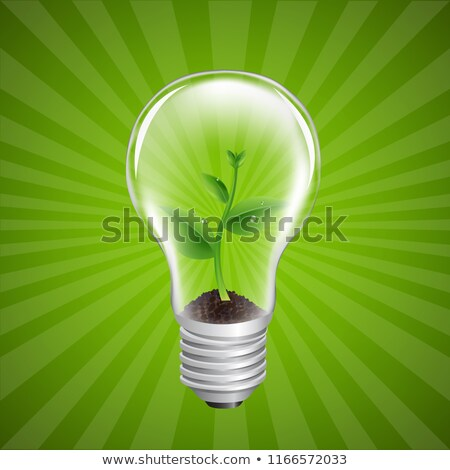 Bulb With Green Sprout Sunburst Background Stock photo © adamson