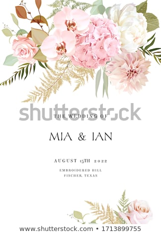 floral pink and beige roses design for wedding invitation stock photo © tasipas