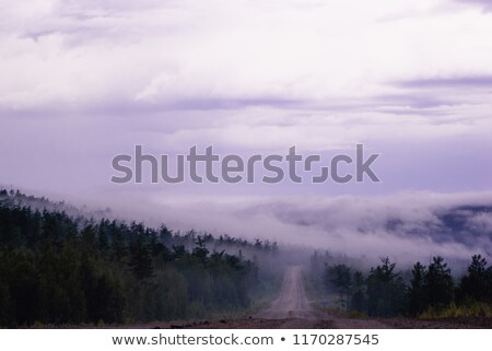 Morning mist crossing the road trough the mountains Stock photo © MikhailMishchenko