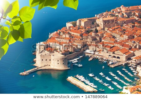Historic town of Dubrovnik panoramic viewthrough leaf frame Stock photo © xbrchx