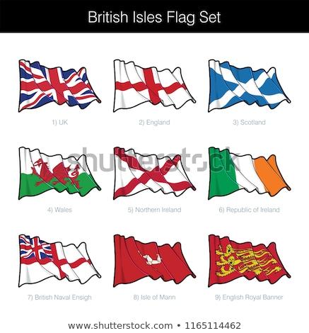 Commonwealth Waving Flag Set Stock photo © nazlisart
