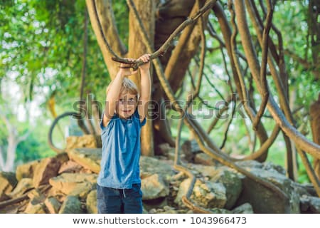 boy watching tropical lianas in wet tropical forests Stock photo © galitskaya