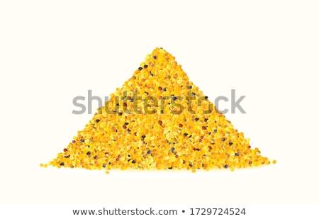 Méh virágpor illusztráció kabala tart kert Stock fotó © lenm