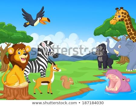 Hippopotamus in the savanna scene Stock photo © bluering