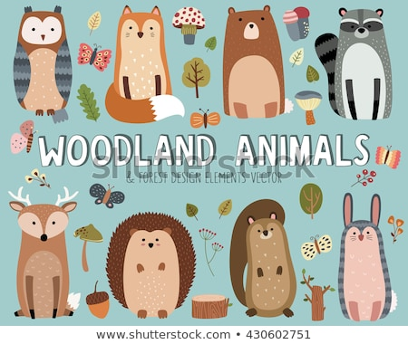 Bear Forest Animal Vector Illustration Isolated Stock photo © robuart