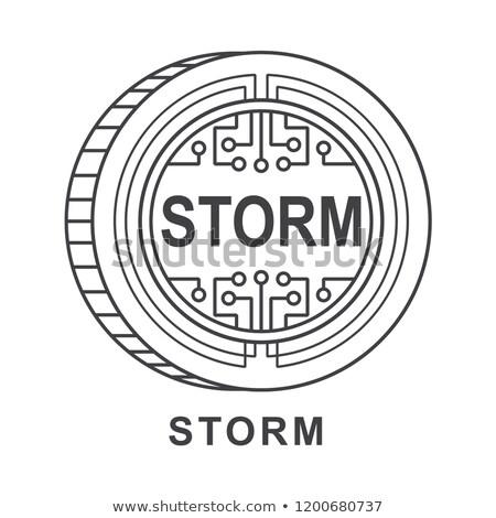 嵐 ロゴ バーチャル 市場 エンブレム 貿易 ストックフォト © tashatuvango