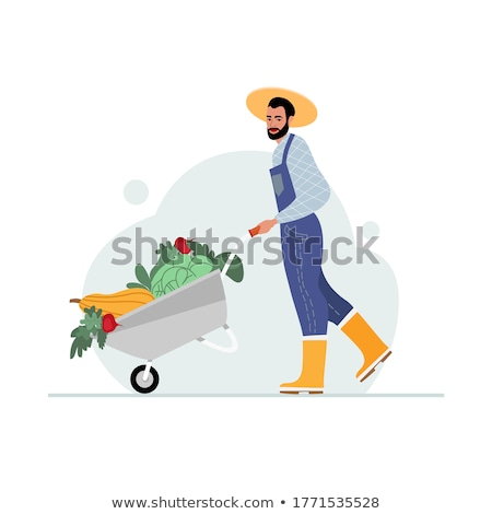Man with Carriage, Wheelbarrow with Vegetables Stock photo © robuart