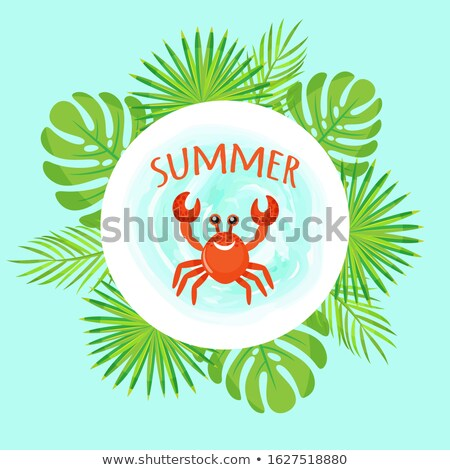 Summer Vacation Crab and Leaves Tropical Frame Stock photo © robuart