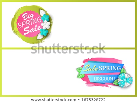 Big Sale Discount Offer Spring Proposition Banner Stock photo © robuart