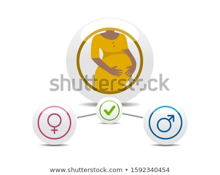 Afro american pregnancy woman. Infographics with boy or girl. Vector illustration Stock photo © Imaagio