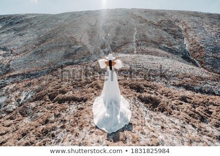 Schönen Braut Hochzeitskleid Berg top Stock foto © ElenaBatkova