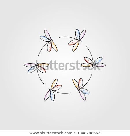 Libel schets icon cirkel dier geïsoleerd Stockfoto © Imaagio