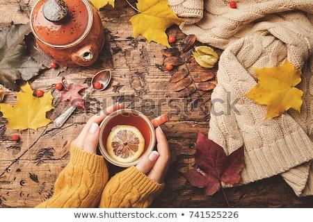 Hände Tasse Tee Herbst Ahorn Blätter Stock foto © dolgachov