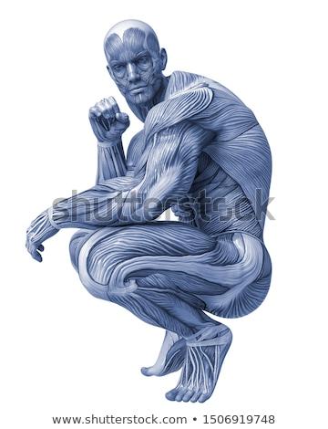 spier · lichaam · man · gewichten · muur - stockfoto © lunamarina