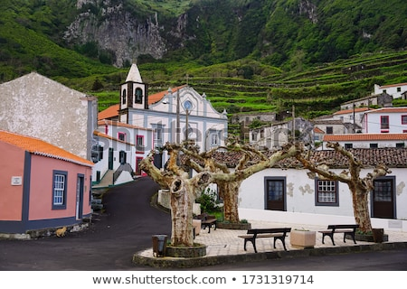 azores village stock photo © mikdam