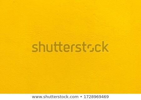 желтый цемент стены Гранж текстуры Сток-фото © schizophrenia