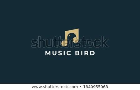 Muziek merkt vogels vector zingen kunst zwarte Stockfoto © beaubelle