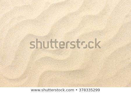Közelkép kilátás tengerparti homok izolált nap természet Stock fotó © ozaiachin