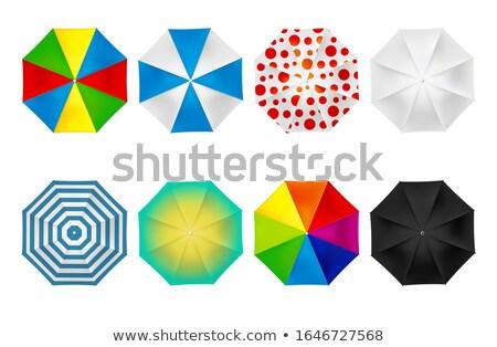 Nő pötty esernyő mosoly boldog jókedv Stock fotó © photography33