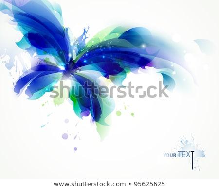 Borboleta artístico estilos verde colorido vetor Foto stock © bharat