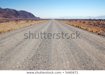 Car driving a gravel road in Namibia Stock photo © michaklootwijk