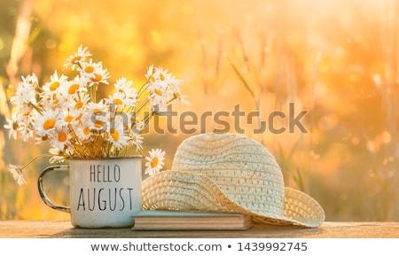 Agosto bella vettore decorativo frame calendario Foto d'archivio © itmuryn