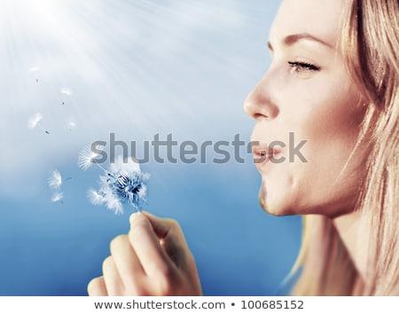 красивая женщина одуванчик цветы Blue Sky небе весны Сток-фото © Nejron