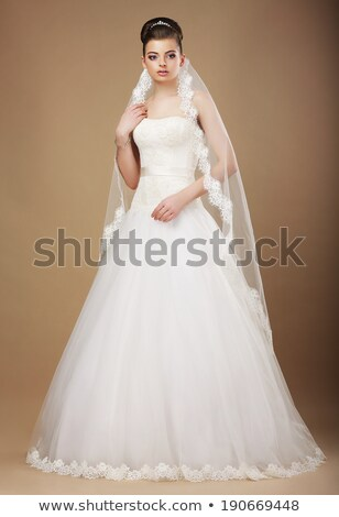 sophistication perfect bride in wedding dress and veil stock photo © gromovataya