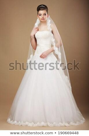 Perfeito noiva vestido de noiva véu mulher modelo Foto stock © gromovataya