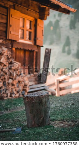 Picado madeira inverno papel Foto stock © meinzahn