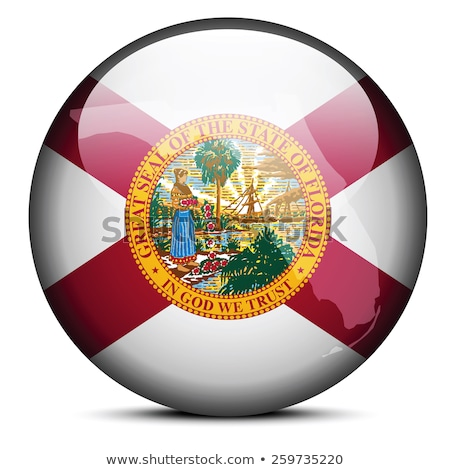 Map on flag button of USA Florida State Stock photo © Istanbul2009