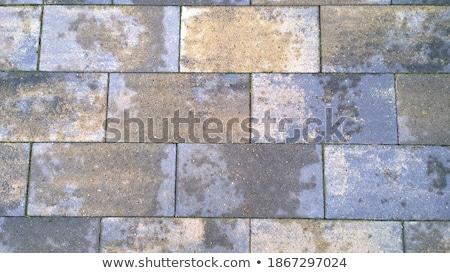 Bruin trottoir naadloos textuur bouw rock Stockfoto © tashatuvango